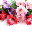 Bouquet of flowers orchid family (Alstroemeria) — Stock Photo