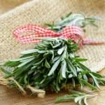 Organic bunch of fresh rosemary — Stock Photo