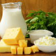 Still life of dairy products (milk, sour cream, cheese, cottage cheese) — Stock Photo