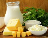 Still life of dairy products (milk, sour cream, cheese, cottage cheese) — Foto de Stock