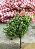 Bunch of fresh green thyme — Stockfoto