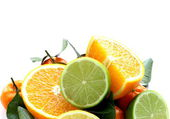 Different types of citrus fruits (orange, lime, lemon, tangerine) — Stock Photo