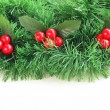 Border of green branches Christmas tree — Stock Photo