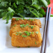Fried spring rolls with herbs and sauce — Stock Photo #37074887