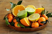 Different types of citrus fruits — Stock Photo
