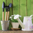 Rustic still life watering can, flowers in pots, garden tools — Stock Photo #38118313
