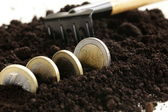 Euro coins grow from the ground - the concept of profit and business development — Stock Photo