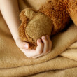 Small child's hand holding plush toy on a beige plaid — Stock Photo #38262887