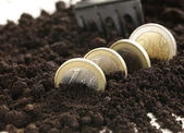 Euro coins grow from the ground - the business concept — Stock Photo