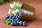 Fresh organic ripe blueberries in a wooden bowl — Stock Photo