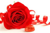 Red beautiful rose with a festive ribbon on white background — Stock Photo