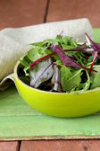 Mix salad (arugula, iceberg, red beet) in a bowl — Stock Photo
