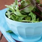 Mix salad (arugula, iceberg, red beet) in a bowl — Stock Photo #41946149