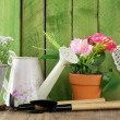 Rustic still life watering can, flowers in pots, garden tools — Stock Photo #42148149
