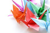 Colorful paper origami birds on a white background — Stock Photo