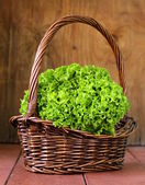 Great fresh organic green lettuce on a wooden background — Foto de Stock