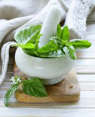 Fresh green basil leaves in a marble mortar — Stock Photo