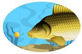 Common carp catching on bait — Vettoriale Stock