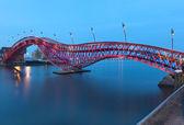Python Bridge in Amsterdam, the Netherlands — Stock Photo