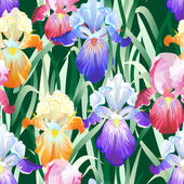 Seamless Background with Multicolored Iris Flowers — Vector de stock