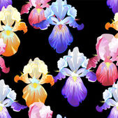 Seamless Black Background with Iris Flowers — Vector de stock