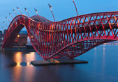 Python Bridge in Amsterdam - night scene — Stock Photo