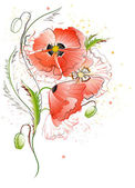 White Background with Red Poppy Flowers — Stockvektor