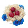 Easter eggs in nest with flowers — Stock Photo #42173799