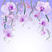 Vector watercolor background with orchids — Stock Vector