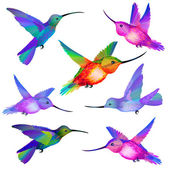 Set of isolated Humming birds — Stock Vector