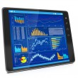 Business Statistics on your Tablet PC. Tablet computer close up — Stock Photo #18878237