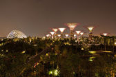 Night view of The Supertree Grove at Gardens by the Bay — Stock Photo