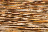 Detail of reed fence — Foto de Stock