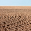 Furrows on autumn field — Stock Photo