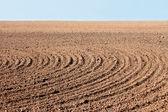 Furrows on autumn field — Stock Photo