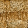 Pile of stacked straw bales — Stock Photo