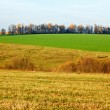 Fields and meadows in autumn — Stock Photo