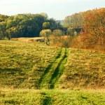 Autumn rural landscape — Stock Photo