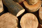 Bunch of cut firewood logs — Stock Photo