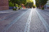 Wide cobbled road — Stock Photo
