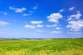Late summer rural landscape — Stock Photo