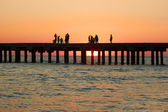 People on the old sea pier during sunset — Stock Photo