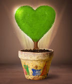 Eco heart tree coming out from flowerpot — Stock Photo