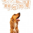 Cute dog with barking bubbles — Stock Photo