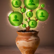 Stock Photo: Social network tree coming out of flowerpot