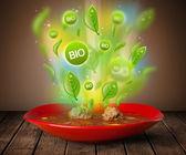Healthy bio green plate of food — Stock Photo