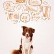 Cute dog with barking bubbles — Stock Photo #38825743