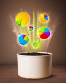 Charts coming out from flowerpot — Stock Photo