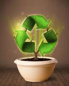 Recycle знак, растущие из горшок — Стоковое фото