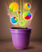植木鉢から出てくるグラフ — ストック写真